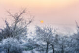 Sun Disk on Misty Winter Morning