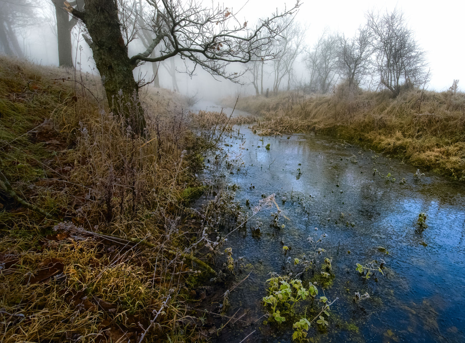 thin ice and thick mist